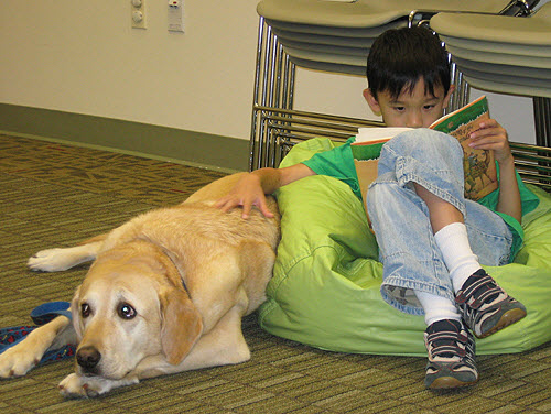 PAWS to READ at Oakton via Fairfax Library Foundation on Flickr